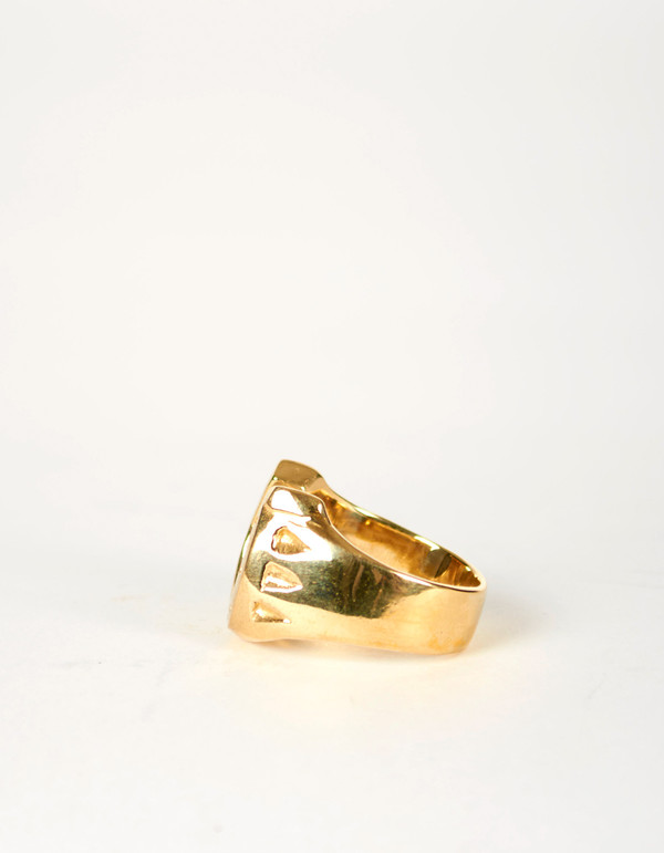 Jon Swinamer Horse Shoe Ring Bronze