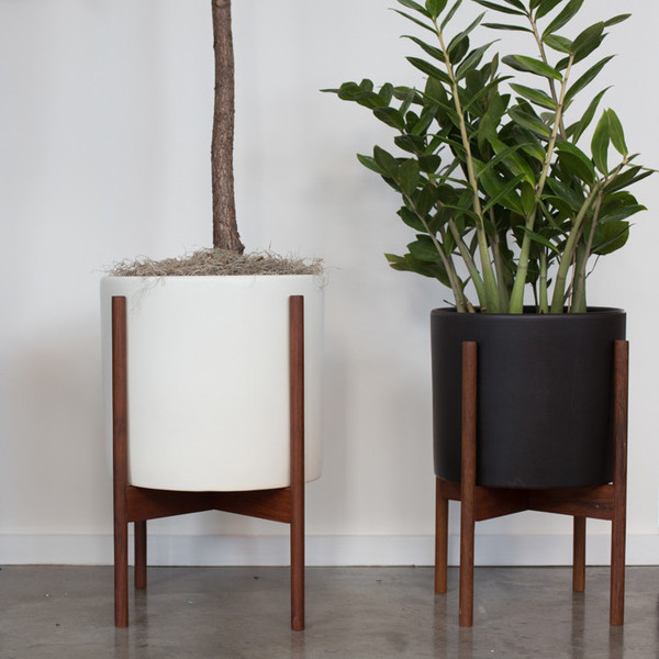 Modernica Case Study Cylinder Planter with Wood Stand