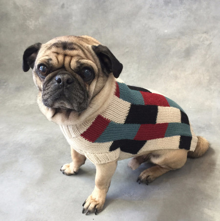 Dusen Dusen Dog Sweater Vertical Bricks