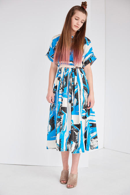 Black Crane Pleated Dress in Print (Black/Blue)