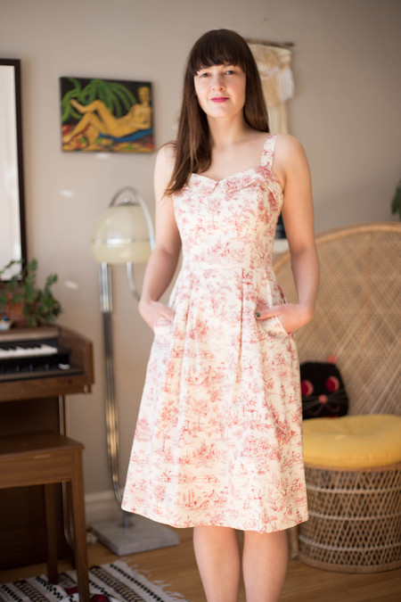 Birds of North America Eider Dress (Rose Toile)
