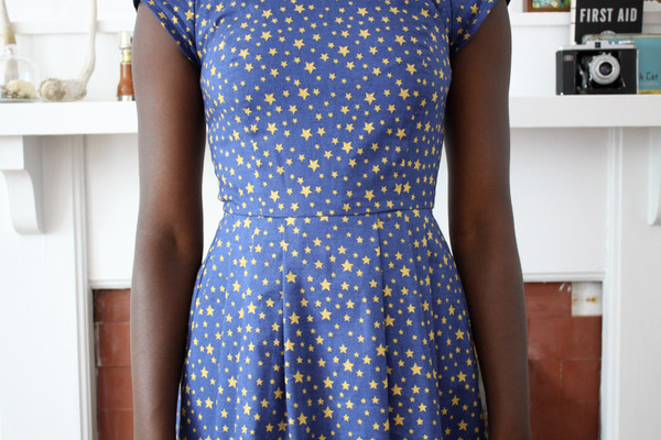 Birds of North America Macaw Dress Stars Print