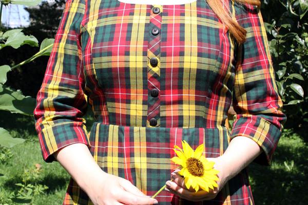 Birds of North America Wood Rail Dress (Buchanan Plaid)