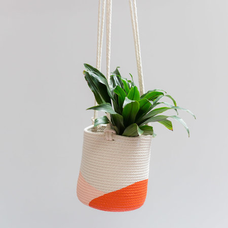 Closed Mondays Everytown Hanging Planter