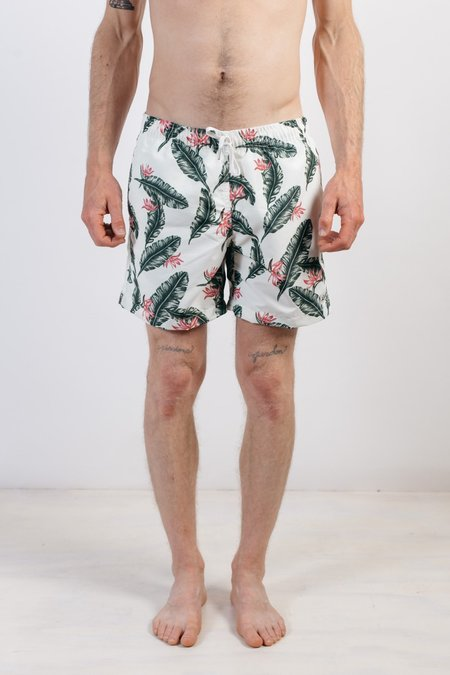 Bather Boardshorts Birds of Paradise Shorts - White Feather Prints