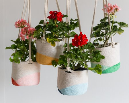 Closed Mondays 6 inch Small Hanging Planter