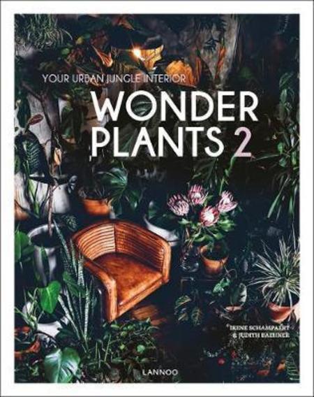Oak Common Wonder Plants 2