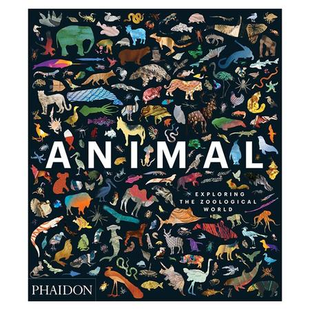 KIDS Library Animal: Exploring The Zoological World