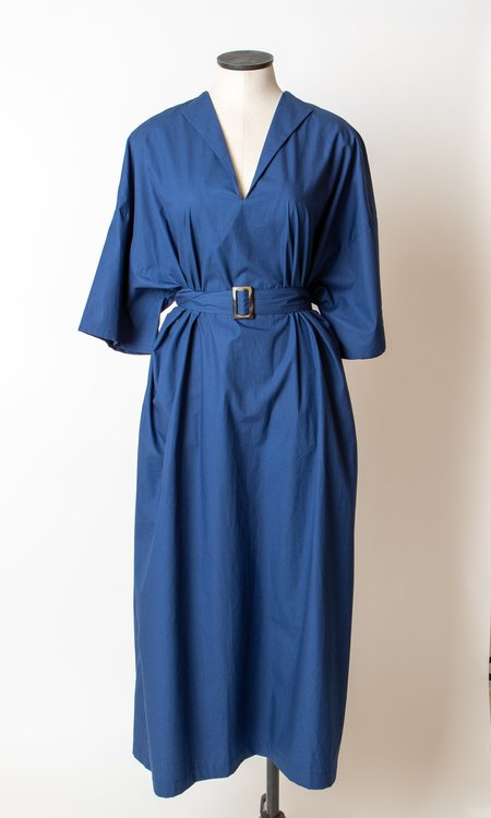 Shaina Mote Avignon Dress - Blue
