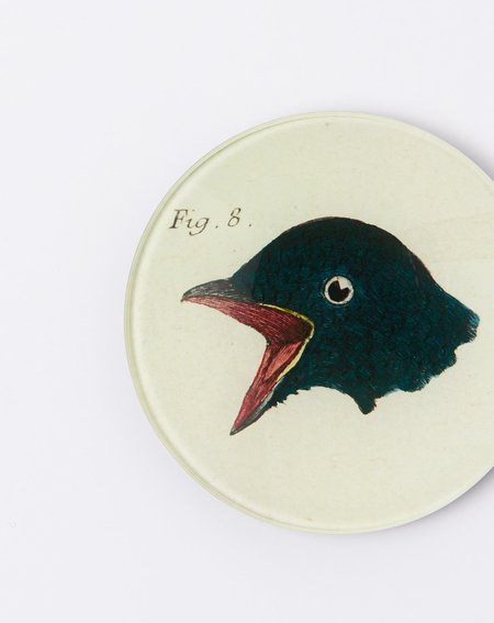 "John Derian Bird Heads (Figure 8) 4"" Round"
