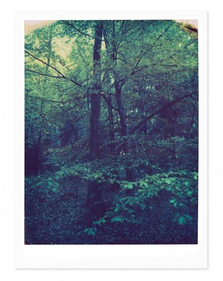 Adam Custins Black Forest, Germany #2