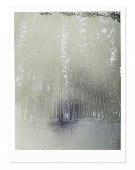 Adam Custins Germany in Snow 3 Art Print