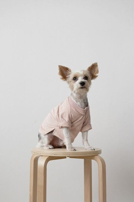 Hemsmith RICE dog shirt
