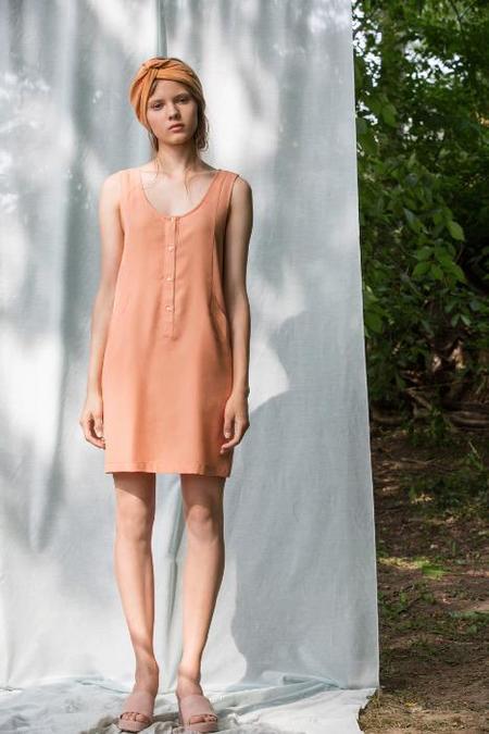 Eve Gravel Salina Dress - Pamplemousse