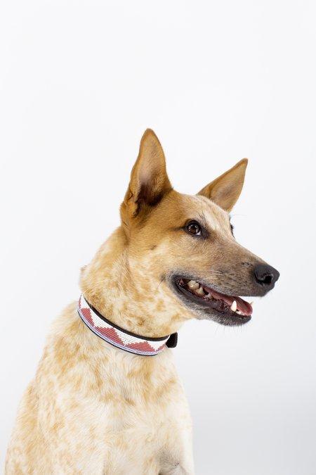 Ubuntu Life Pet Collar - Desert