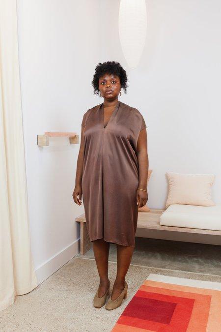Miranda Bennett Studio Silk Charmeuse Sunrise Everyday Dress - Acacia Iron V.I