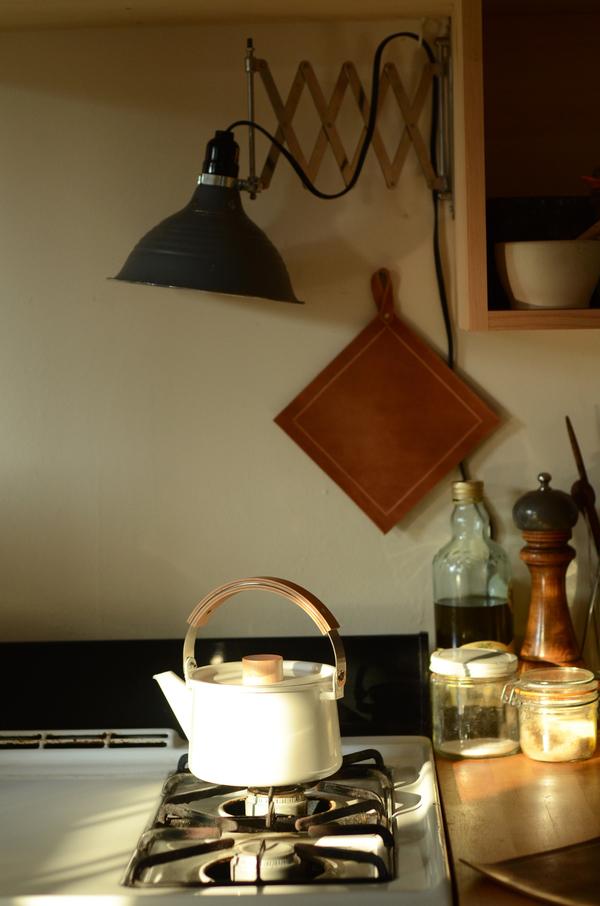 Leather Potholder