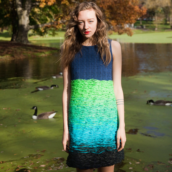 Erica Tanov bergen dress