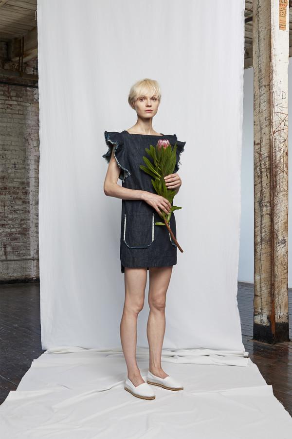 Whit Lark Dress