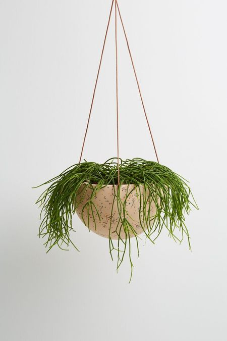 Capra Designs Terrazzo Dome Hanging Planter - Salt
