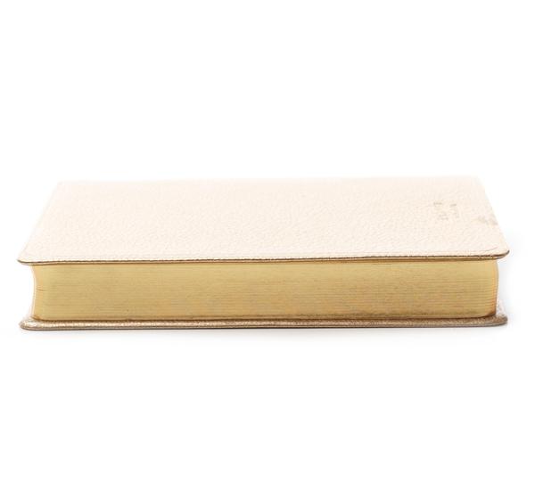 Hayden Leather White Gold World Travel Journal