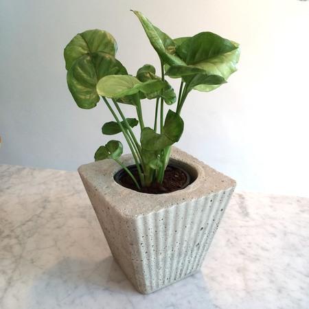 an artful life Concrete ridged pot