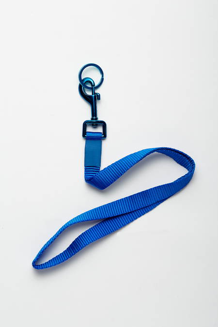 The Celect Industrial Pop Lanyard - Blue