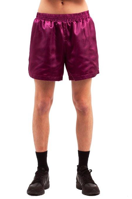 Walter Van Beirendonck Boxer Shorts - Purple