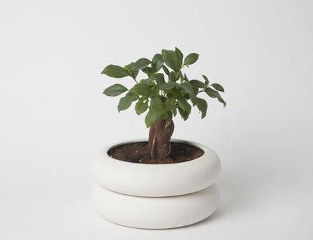 Chen & Kai Power Planter