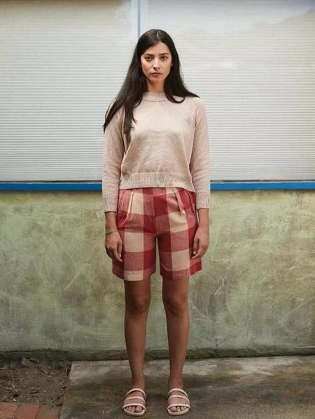 Ali Golden Fancy Shorts - Raspberry Gingham