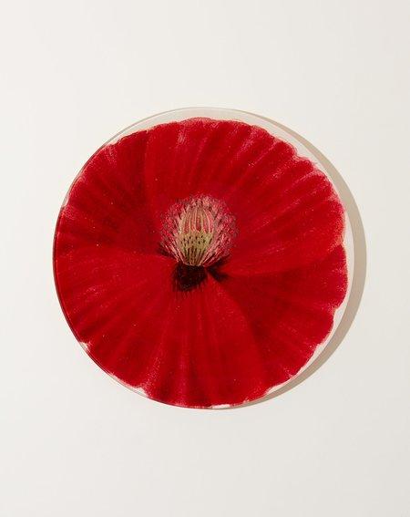 John Derian Wild Rose Poppy 10 Round Plate