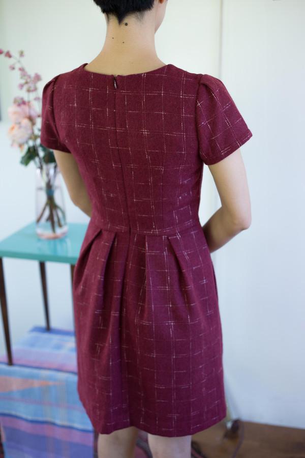 Birds of North America Drongo Dress (Cranberry)