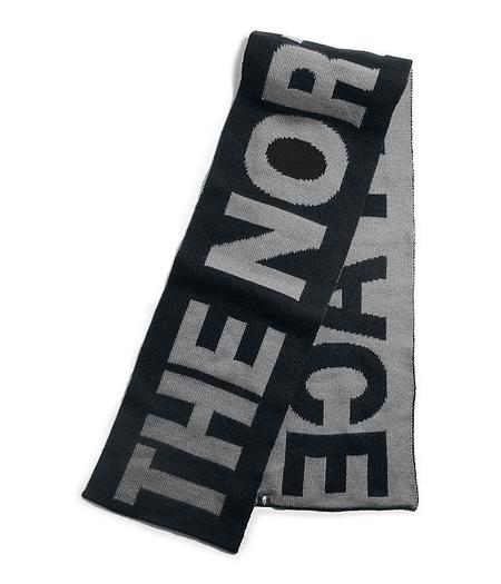 THE NORTH FACE TNF LOGO SCARF - gray