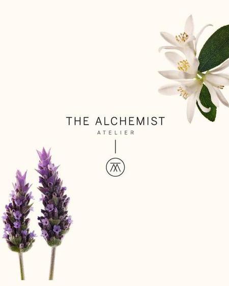 The Artist and the Alchemist Crea tu Esencia