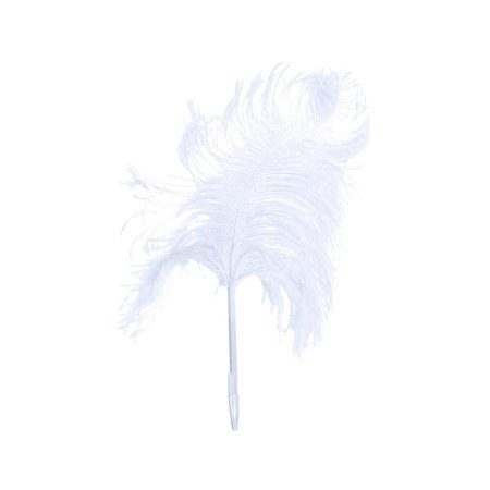 Maison Margiela Ostrich Feather Pen