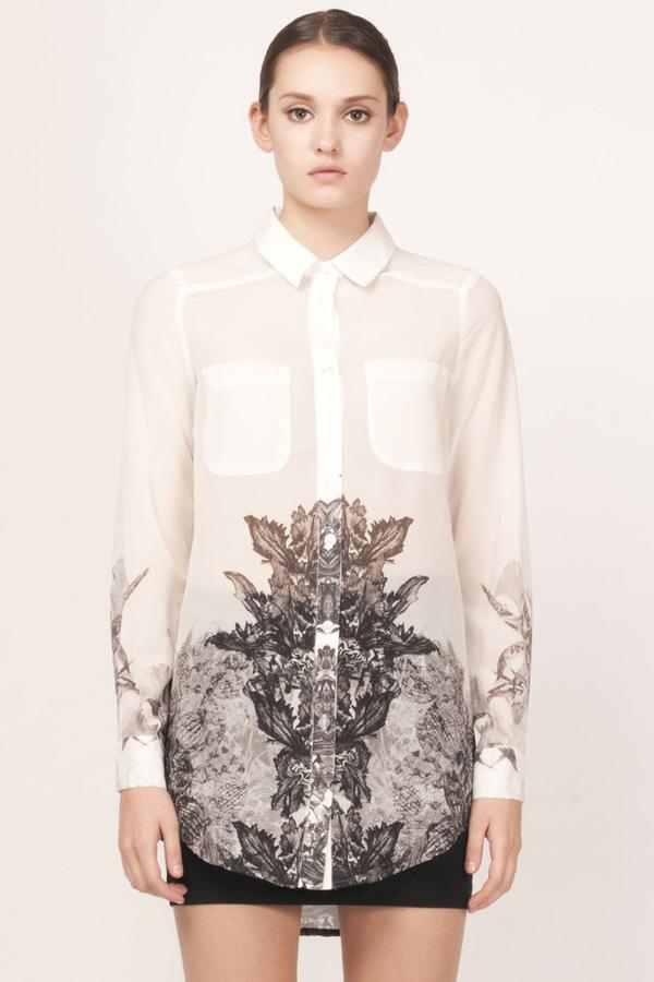 lazo shirt