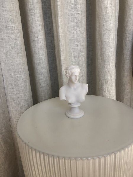 Vintage Venus Bust