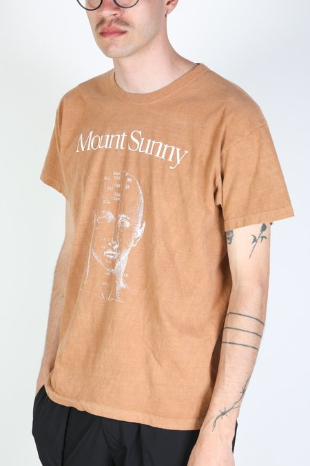 MOUNT SUNNY ANATOMY TEE - DIRT