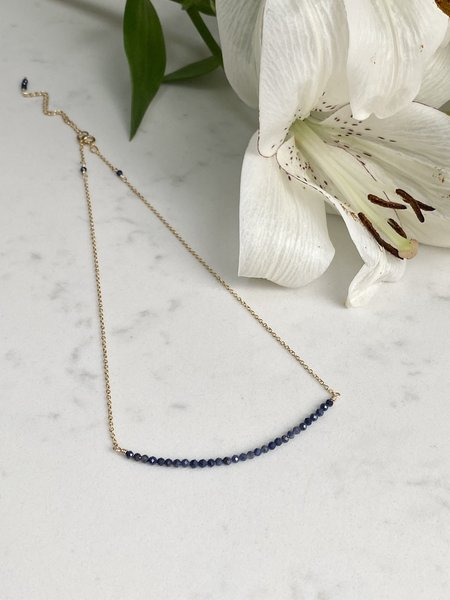 The Loved One Sapphire Bar Choker Necklace