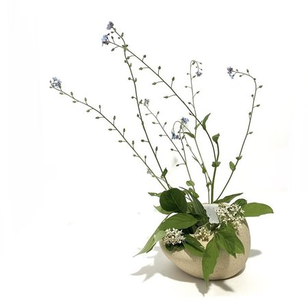 Allison Skinner 5 Blooms Bud Vase - Buff