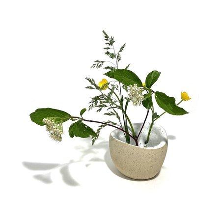Allison Skinner 7 Blooms Bud Vase - Buff