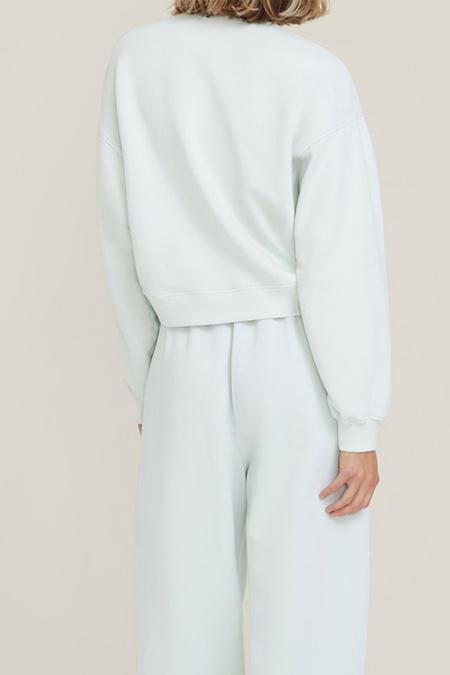 Agolde Chevron Sweatshirt - Vanilla Mint