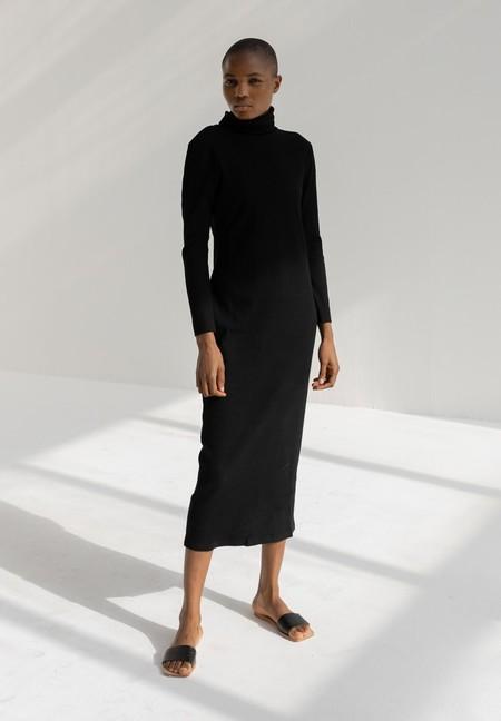 Delfina Balda Bc Turtle Ribbed Dress - Black