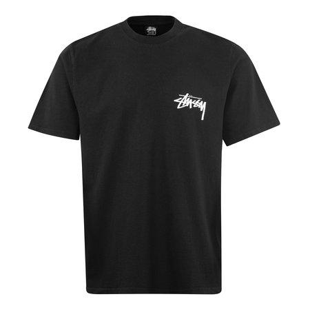 Stussy Painter Pigment Dyed T-Shirt - Black