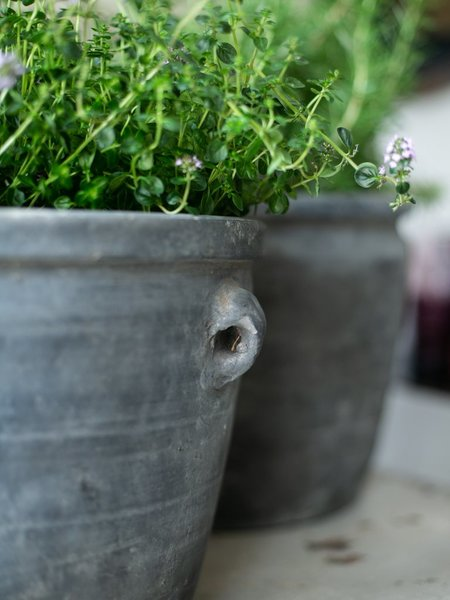 Large Rustic Pot with Handles