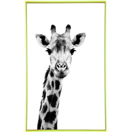 FUDJE Black and white Giraffe print on canvas with frame