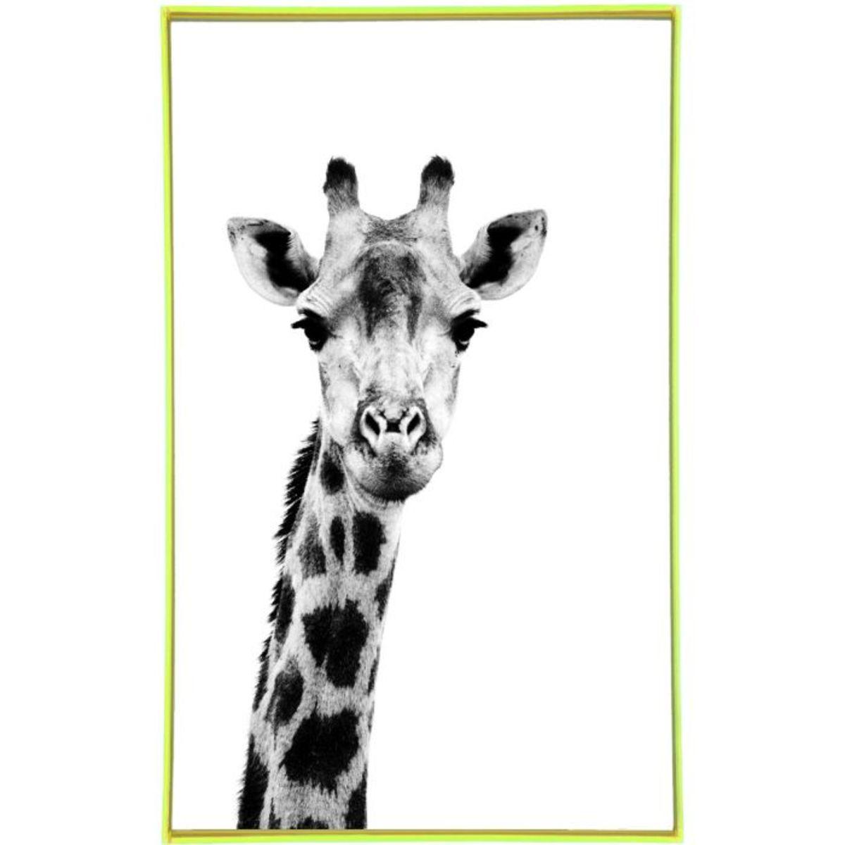 Fudje frame it black and white giraffe print on canvas for Best black and white prints