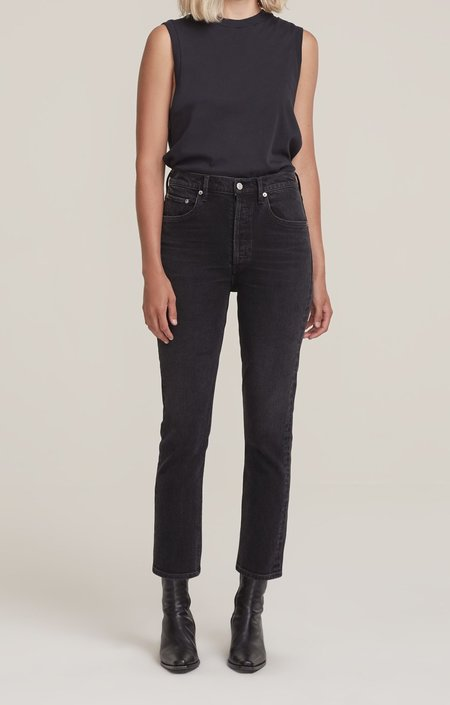 Vintage AGOLDE Riley High Rise Straight Crop pant - Panoramic