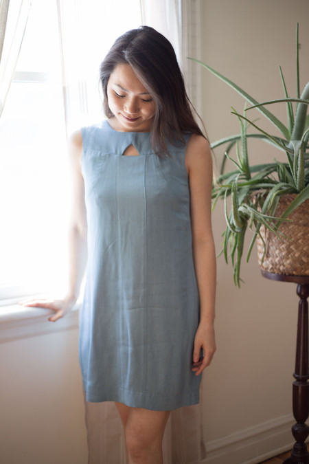 Birds of North America Crow Dress (Faded Denim)