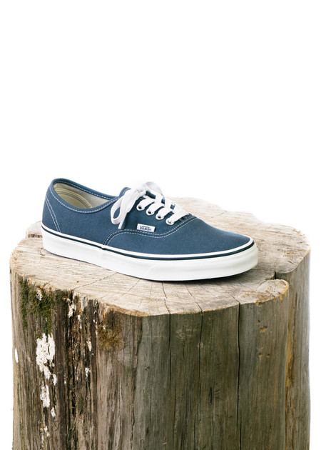 Vans Authentic - Dark Slate/True White